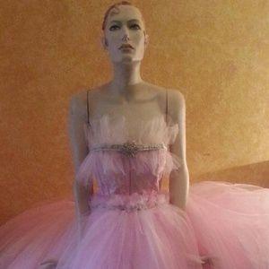 TAMMY Pink & Silver Corset Tulle Ballgown Set